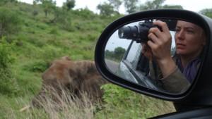 Dichter geht's nicht - Glücksfall bei der Wildtier-Pirsch in Afrika