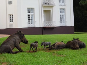 Victoria Falls Hotel, Simbabwe