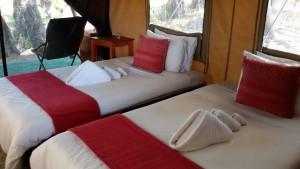 afrika,safari,safariscout,botswana,flyin, botswana, simbabwe,chobe, nationalpark,reise, urlaub