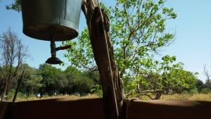 afrika,safari,fly in, safariscout, okvango delta, botswana, victoria falls, zelt, camp